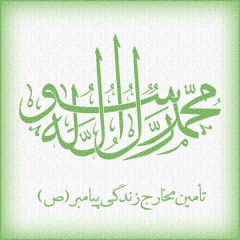 پیامبر بزرگوار اسلام (صلی الله علیه و آله) مخارج زندگی خود را از چه راه هایی تأمین می کردند؟