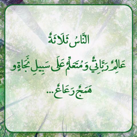 «همج رعاع» یعنی چه و مراد از آن، چه کسانی هستند؟